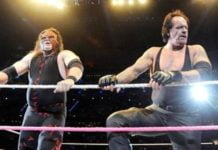 Kane And Undertaker - Brothers Of Destruction