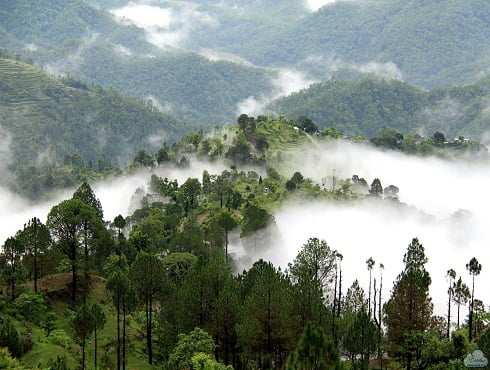 Hill Station - Uttrakhand