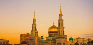 सुन्नी मौलानाओं