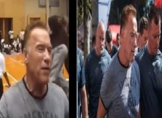 Arnold Schwarzenegger attacked at South African event