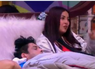 Big Boss 13 male and female contestants were share a bed