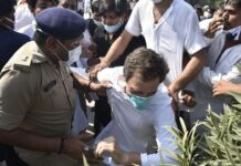 Rahul Gandhi released after arrest