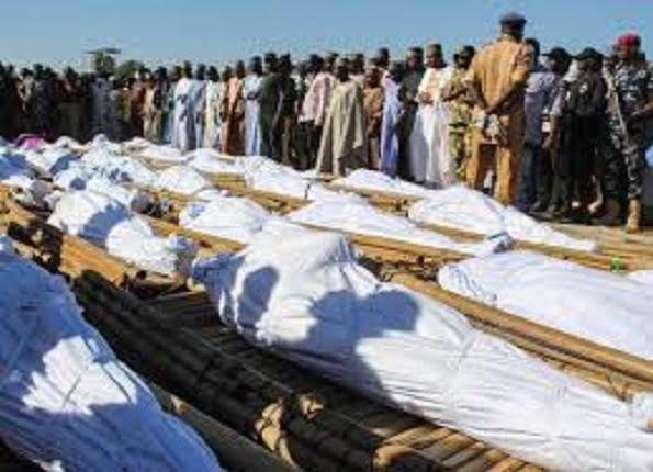 violence torn Borno